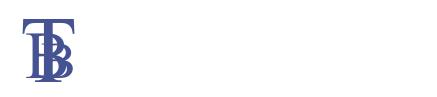 Logo tbb top white